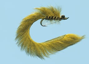 Turrall Leech Lead Eye Olive Bass Bug