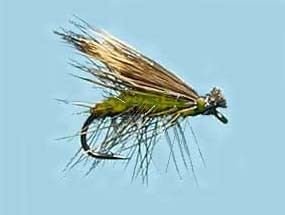 Turrall Caddis (Sedge) Elk Hair Olive
