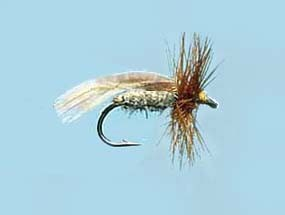 Turrall Caddis Sedge Europe 12