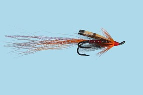 Turrall Double Salmon Allys Shrimp Orange