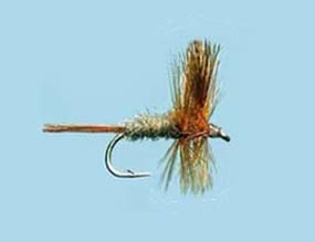 Turrall Dry Winged Cahill Dark