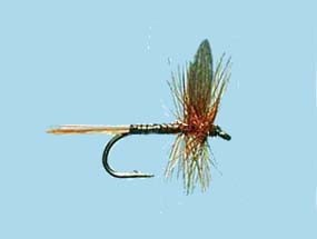 Turrall Dry Winged Red Quill Size 14
