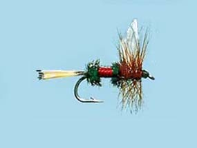 Turrall Dry Winged Royal Coachman
