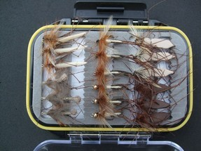 turrall fly pod daddies