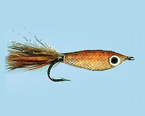 Turrall Little Gem Amber Size 6