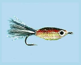 Turrall Little Gem Jet Size 6
