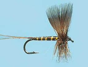 Turrall Mayfly Brown Drake