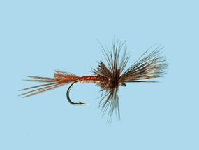Turrall Mayfly Brown Drake Cripple Size 10