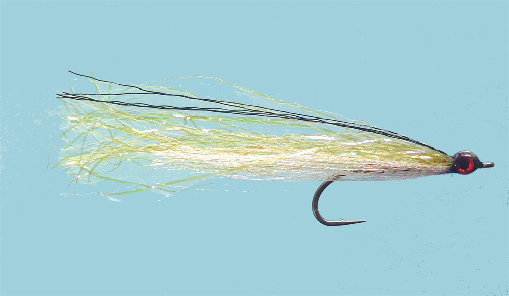chris ogbourne olive baitfish