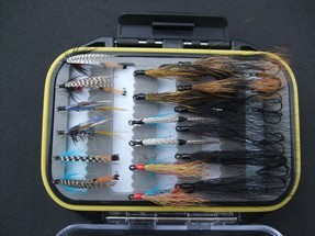turrall sea trout fly pod