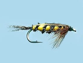 Turrall Weighted Nymph Tellico - Size 10