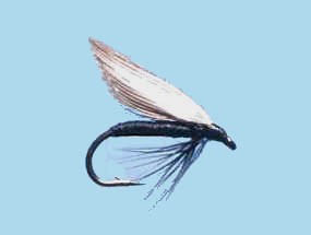 Turrall Wet Winged Black Gnat