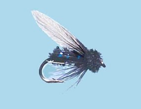 Turrall Wet Winged Blue Bottle - Size 12