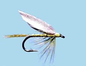 Turrall Wet Winged Olive Dun - Size 12