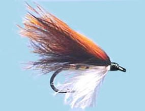 Turrall Wet Winged Perch Fry - Size 12