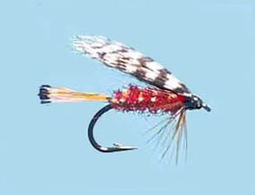 Turrall Wet Winged Teal & Red - Size 12