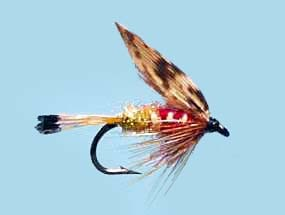 Turrall Wet Winged Woodcock & Mixed - Size 12