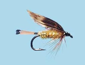 Turrall Wet Winged Woodcock & Yellow - Size 12