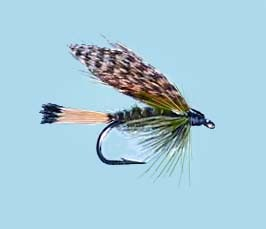 Turrall Wet Winged Sooty Olive - Size 12