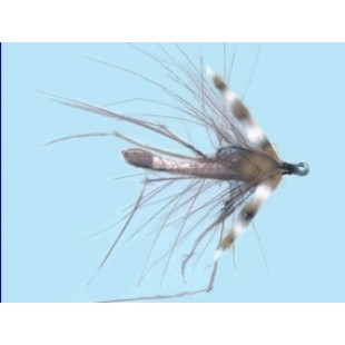 Turrall Daddy Long Legs Cdc Size 10