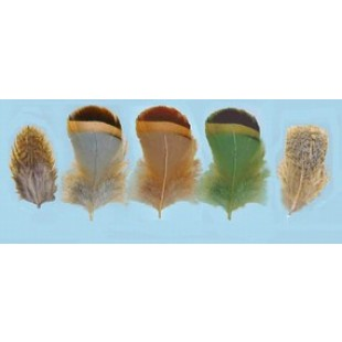 Turrall Partridge Hackles