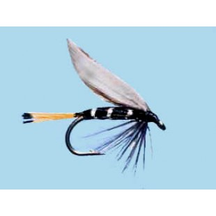 Turrall Wet Winged Blae & Black