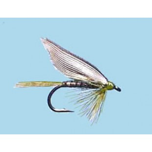 Turrall  Wet  Winged  Olive  Quill
