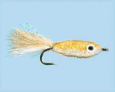 Turrall Little Gem Coral Size 6