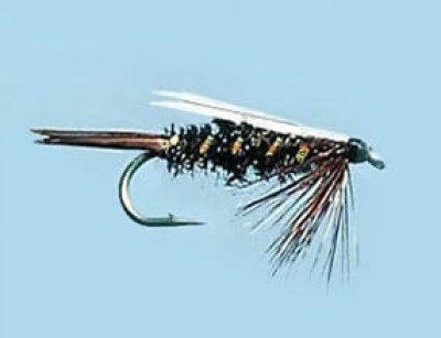 Turrall Weighted Nymph Prince - Size 10